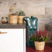 Cucina arredata con mobili moderni fatti su misura