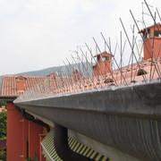 Installazione dissuasori Piccioni