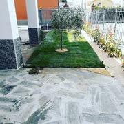 Realizzazione nuovo giardino