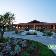 Green Village Hotel ****
