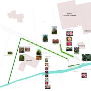 Distributori Rain bird - progetto NUOVA SEDE con aiuole