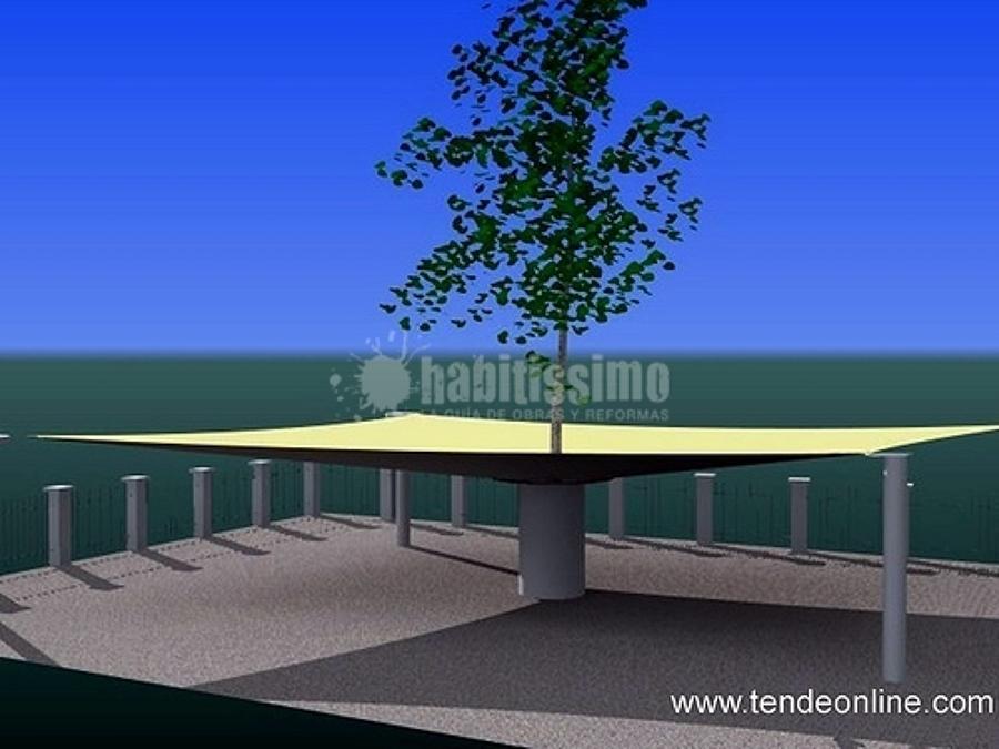 L'albero con la vela intorno