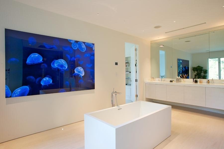 Parete Dacqua In Casa : Parete dacqua. acquario a parete. in questo piccolo la sala da
