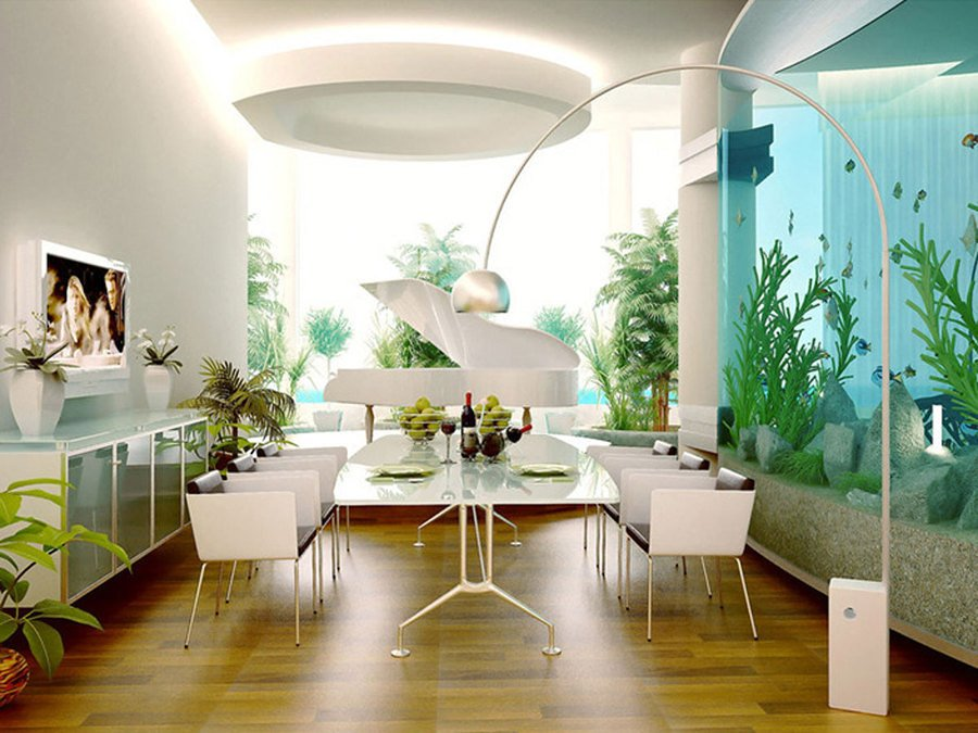 Sentiti come un pesce nell acqua con un acquario in casa for Acquario in casa