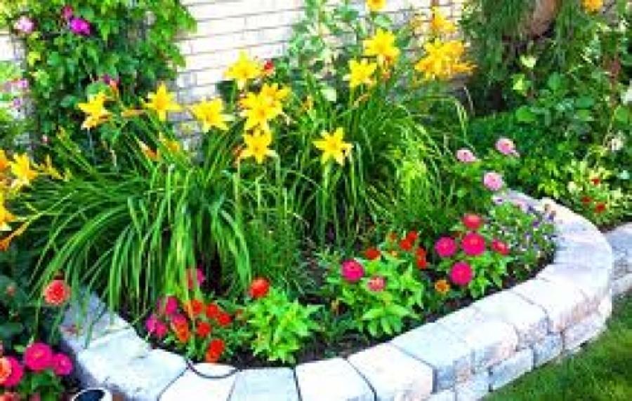 Progetto realizzazione aiuole fiorite idee giardinieri for Progetto aiuole per giardino