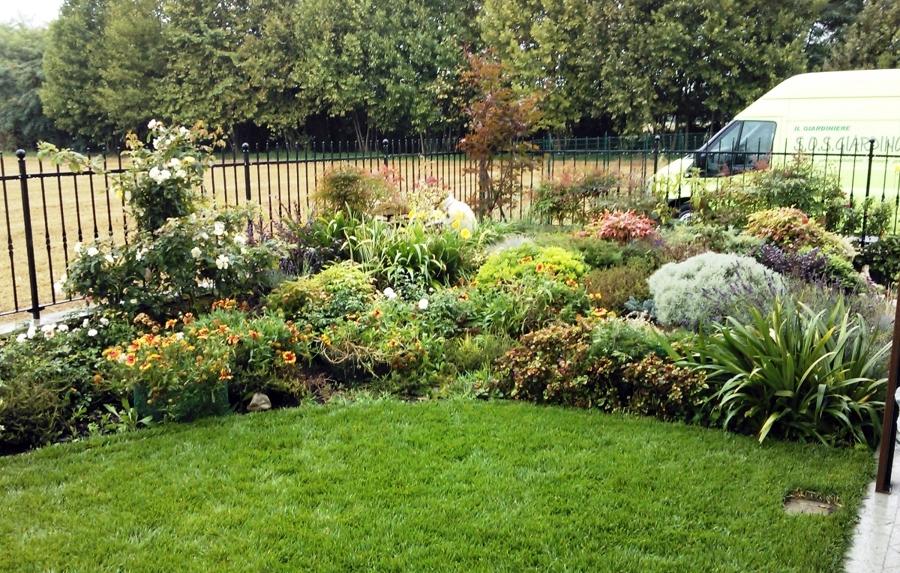 Progetto di creazione giardino con prato semicircolare con for Conifere da giardino