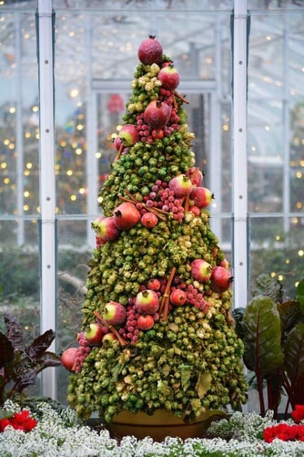 albero frutta