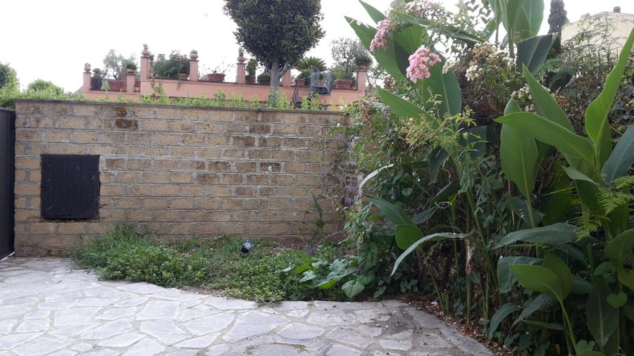 Angolo piante di arredo;