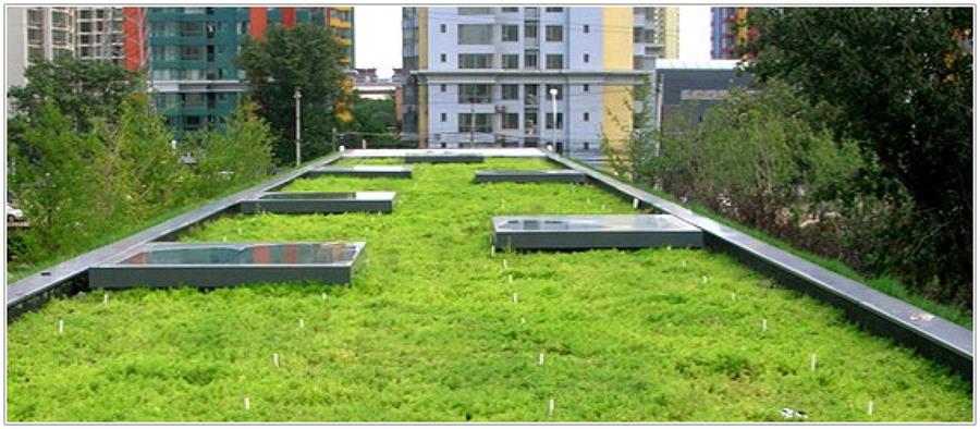 Tipi di Terrazze Verdi | Idee Interior Designer