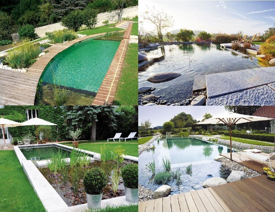 Vari progetti idee paesaggisti - Biopiscine prezzi ...