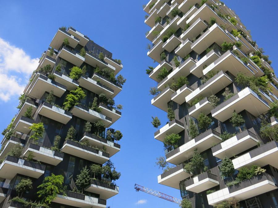 Crea il tuo giardino verticale idee giardinieri for Crea il tuo giardino