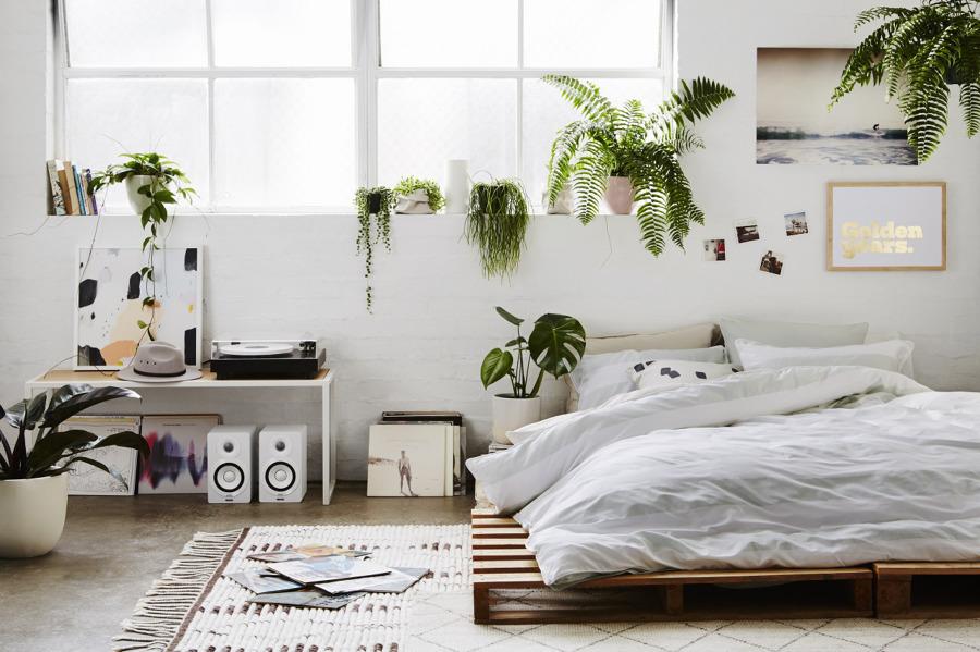 foto: camera da letto con piante di rossella cristofaro #487083 ... - Piante Da Camera Da Letto