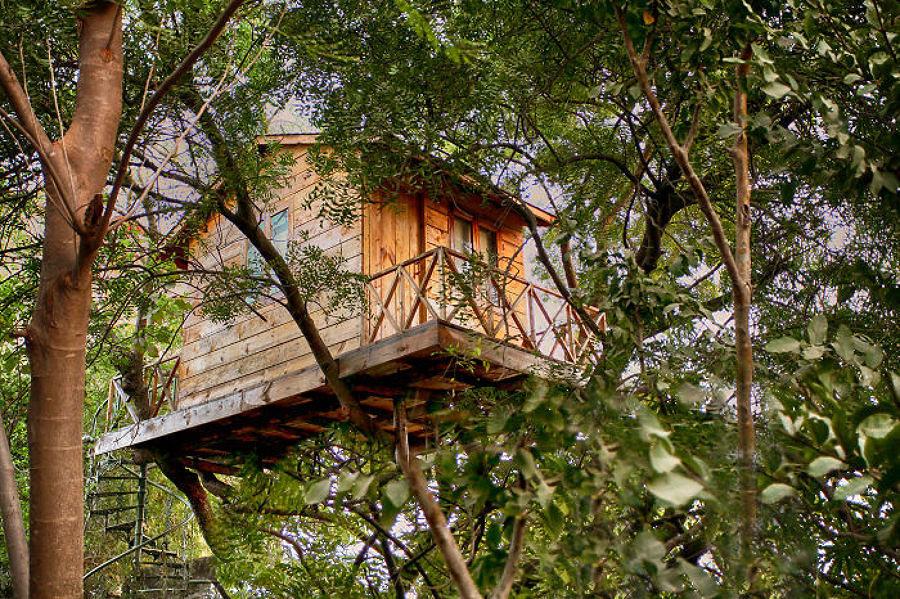 Torna bambino e divertiti a costruire la tua casa sull - Casa sull albero da costruire ...
