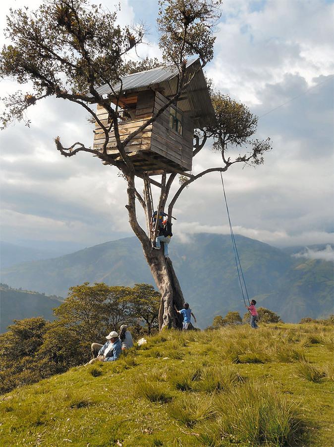 Foto casa sull albero elevata di valeria del treste 319387 habitissimo - Casa sull albero progetto ...