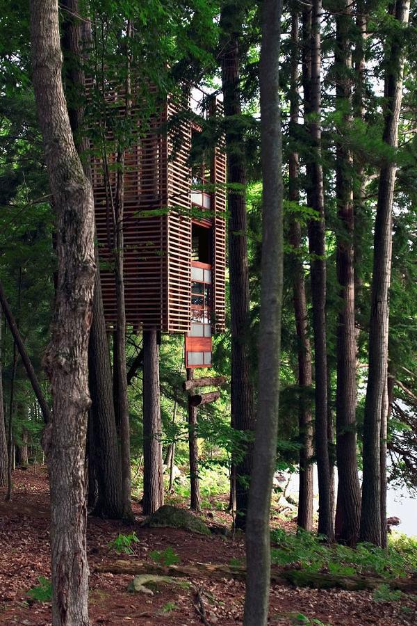 casa sull'albero, versione moderna