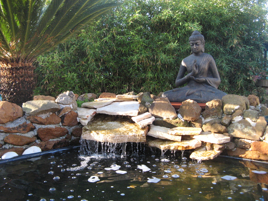 Laghetto per carpe koi stile informale giardino con for Laghetto i giardini