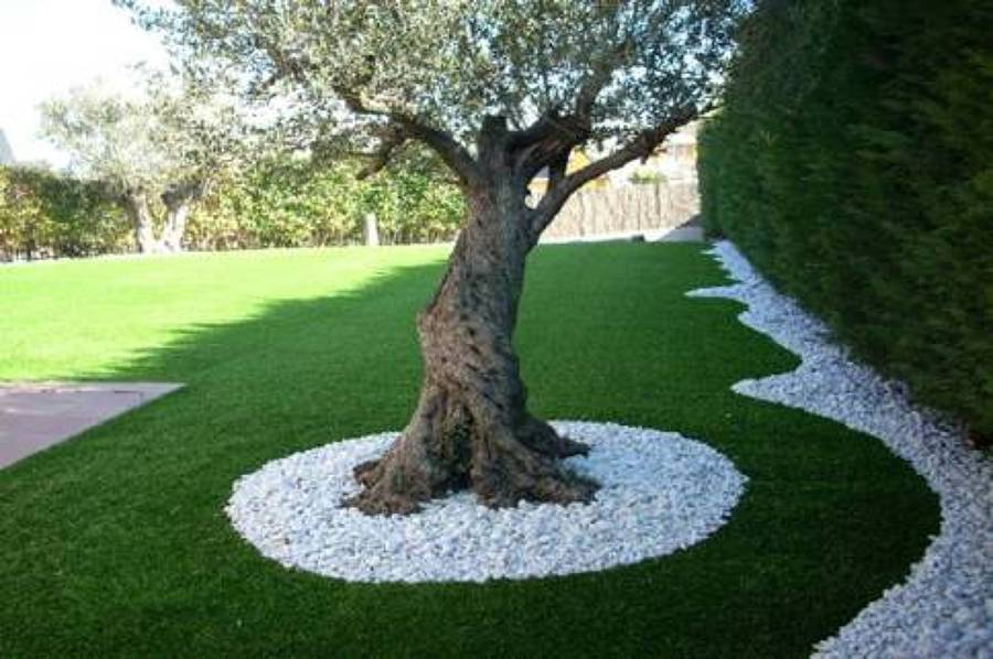 Come decorare il giardino con ghiaia e sassolini idee for Decorazioni giardino con sassi