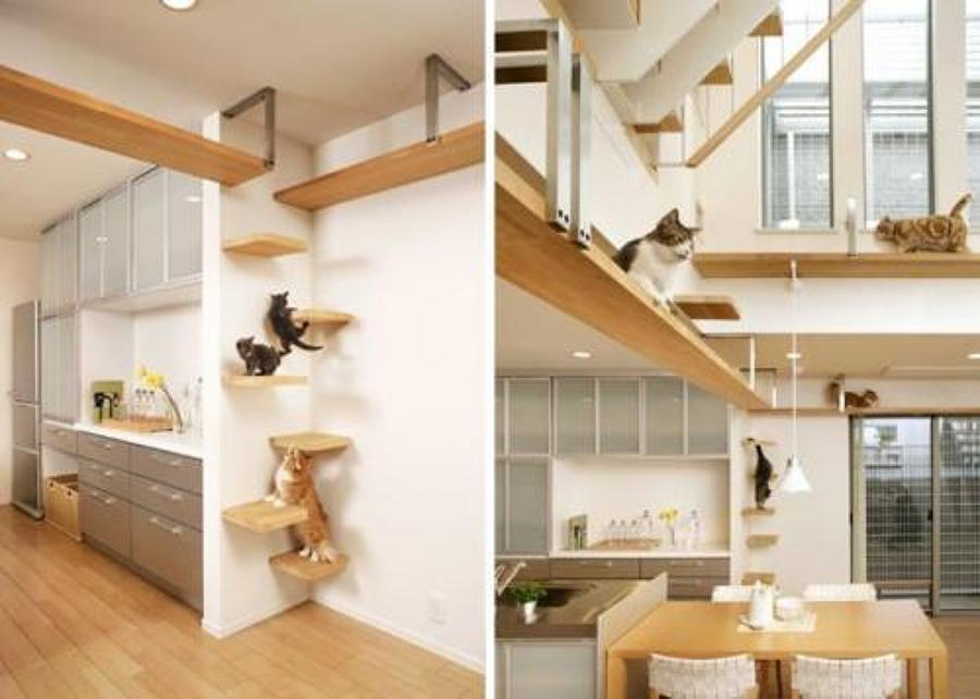 Come arredare una casa a misura di gatto idee interior for Come costruisco una casa