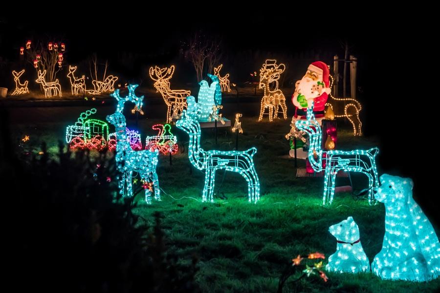 Decorazioni Natale giardino