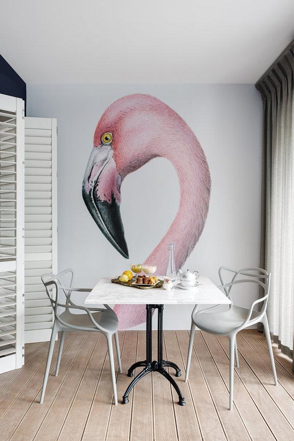 Adotta un Fenicottero nella Tua Casa! | Idee Interior Designer