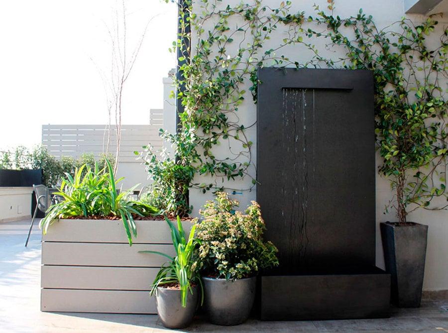 fontana con piante