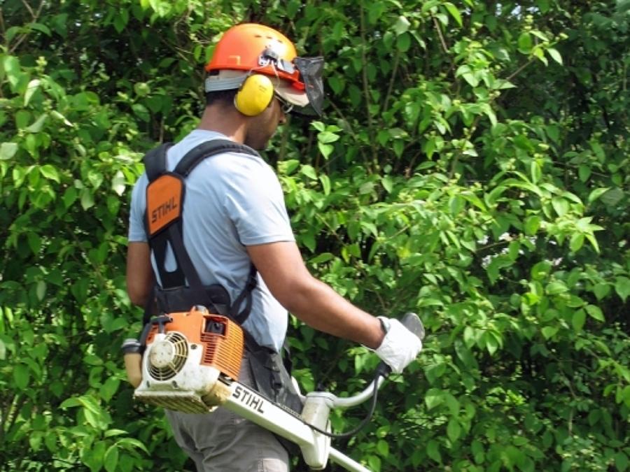 Foto giardiniere al lavoro de speed casa torino 322736 for Giardiniere milano
