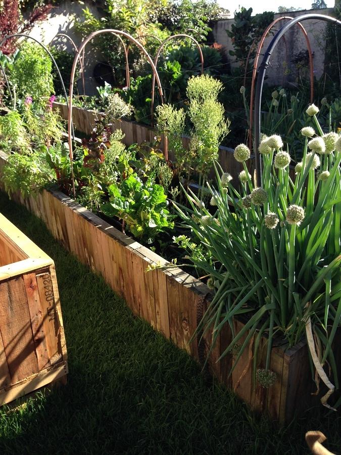 Progetta e crea il tuo giardino ecologico idee interior for Crea il tuo giardino