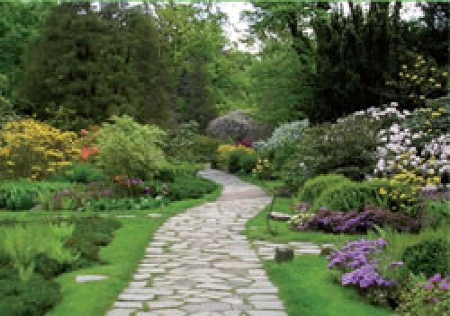 Foto giardino fiorito di filippo parisi giardinaggio for Progetto aiuole per giardino