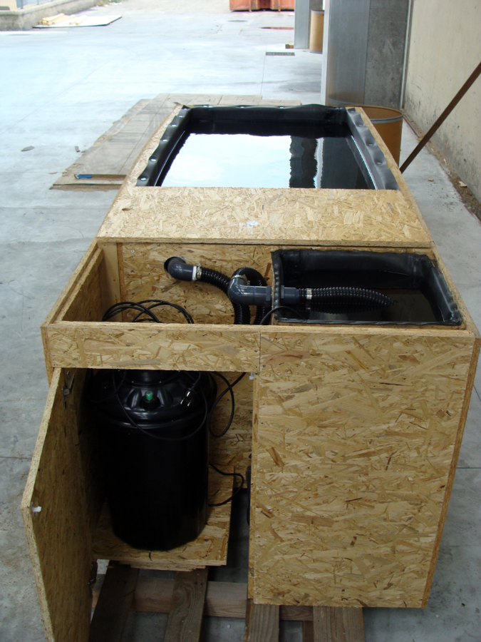 Progetto creazione laghetto componibile idee domotica for Laghetto balneabile progetto
