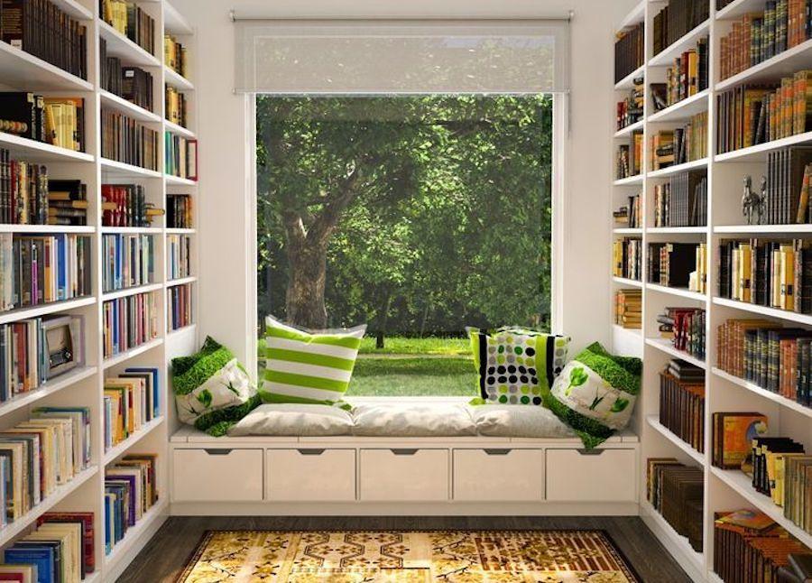 libri e finestre