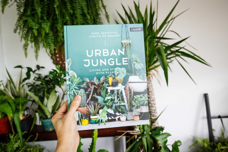 7 libri dove ispirarsi per una casa di design idee for Layout di una casa di una storia