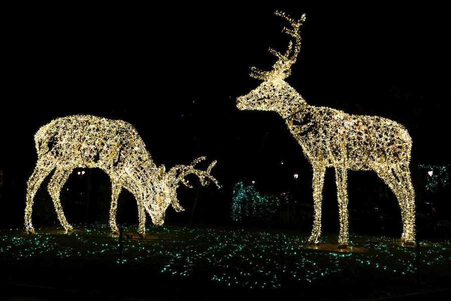 Luminarie di Natale più belle d'italia 3 salerno