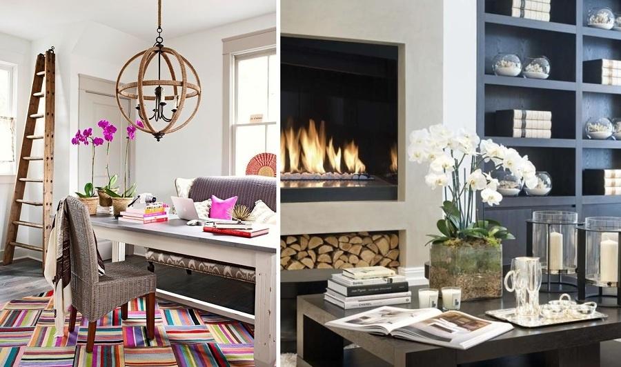 Mobili Per Orchidee : Orchidee per decorazioni eleganti e delicate ...