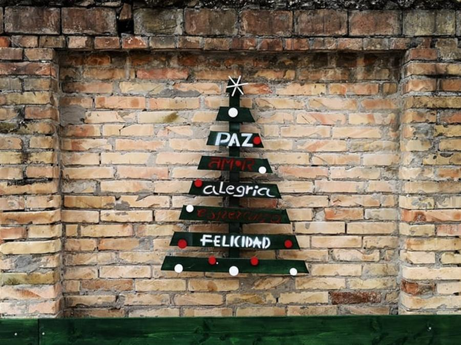 parete albero