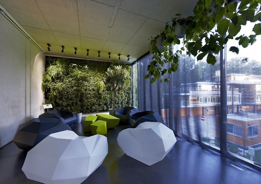 Foto piante ufficio di valeria del treste 278327 - Piante per ufficio ...