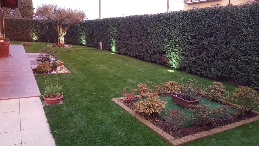 foto: prato a rotoli con progettazione giardino ed impianto di ... - Progettare Irrigazione Giardino