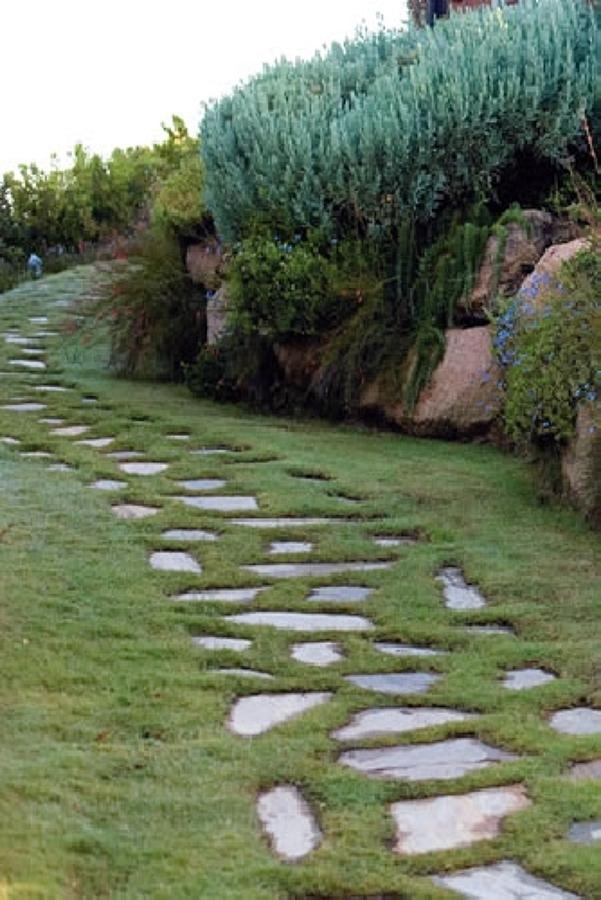 Progettazione giardini idee giardinieri - Idee progettazione giardino ...