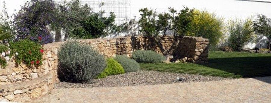 giardini idee pratiche manutenzione : Progetto Giardino Mediterraneo Idee Giardinieri
