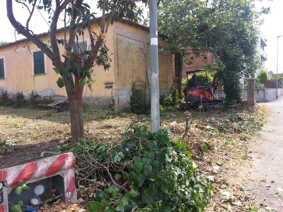 Giardinaggio pulizia di un terreno in pessime condizioni - Prima casa condizioni ...