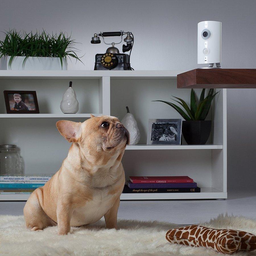 Progetta la tua casa sistemi di allarmi idee allarmi e impianti di sicurezza - Progetta la tua camera ...