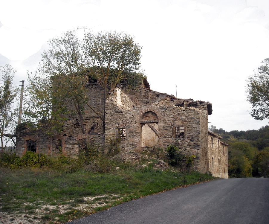 Vaccaria pre4