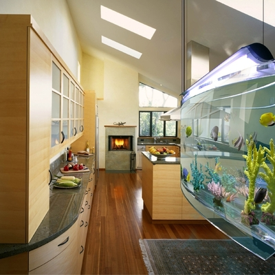 Idee di acquario per ispirarti habitissimo for Acquario casa prezzi