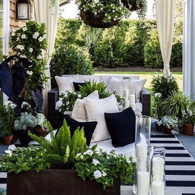 Idee e foto di piante per terrazzi per ispirarti habitissimo - Piante sempreverdi per terrazzi ...