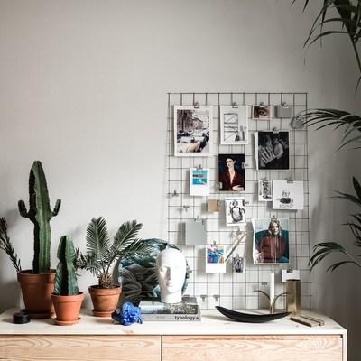 Angolo decor con piante e fotografie