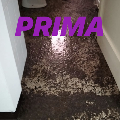 Disinfezione appartamento Lecco post rottura tubi Wc