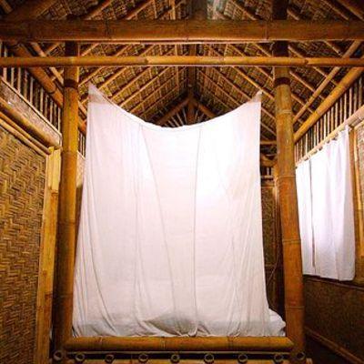 bambu284