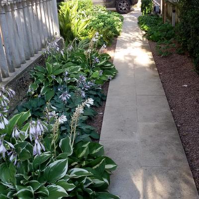 Giardino per una villa Liberty