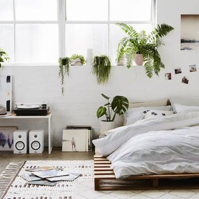 Consigli, prezzi e idee per insonorizzare la camera - Habitissimo