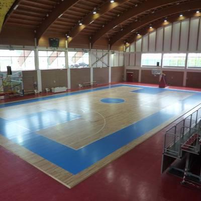 Progetto campo da basket a Cantalupa (TO)