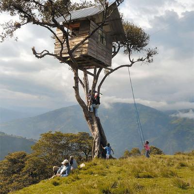 Torna bambino e divertiti a costruire la tua casa sull'albero!